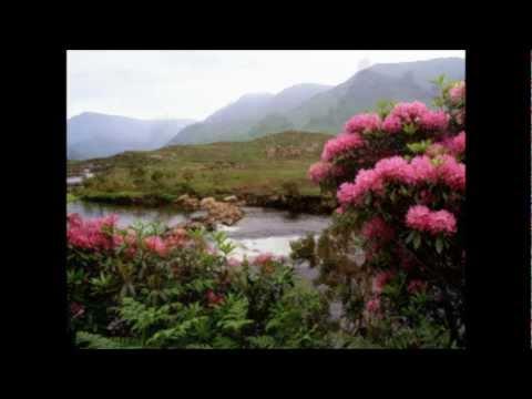 Sinéad O'Connor - Raglan Road - High Quality