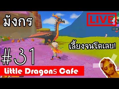 Little Dragons Cafe : LIVE 31 เลี้ยงมังกรจนโต thumbnail