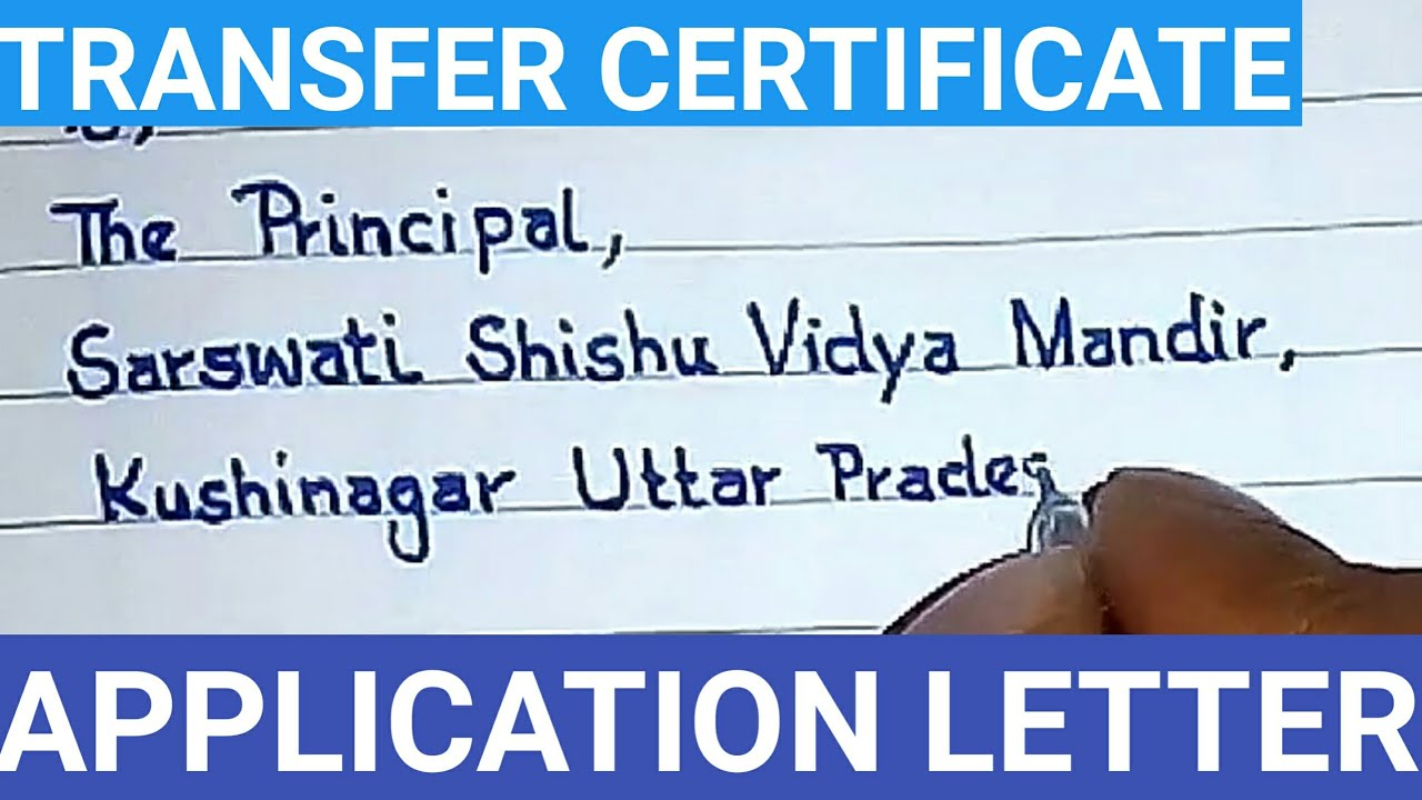 tc application in english how to write transfer certificate application for school in english
