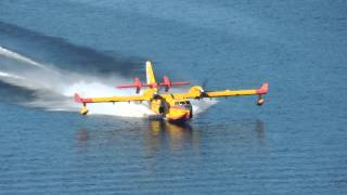 Ejercito del Aire Avion contraincendios.Canadair CL-215