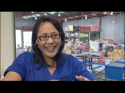 Working in New Zealand 12 - Mining, Freight Forwarding, Interior Systems - JTJS2 Ep2