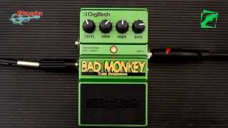 DigiTech Bad Monkey - demo, reamping test
