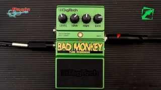 DigiTech Bad Monkey - demo, reamping test