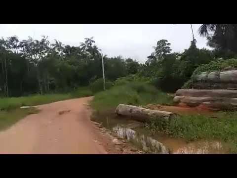 Estrada do Moconha - Melgaço/Pa