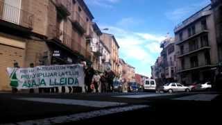 Manifestació de A.S.A.J.A. (Lleida), Ponts 26/02/2014. Contra la pujada de la llum