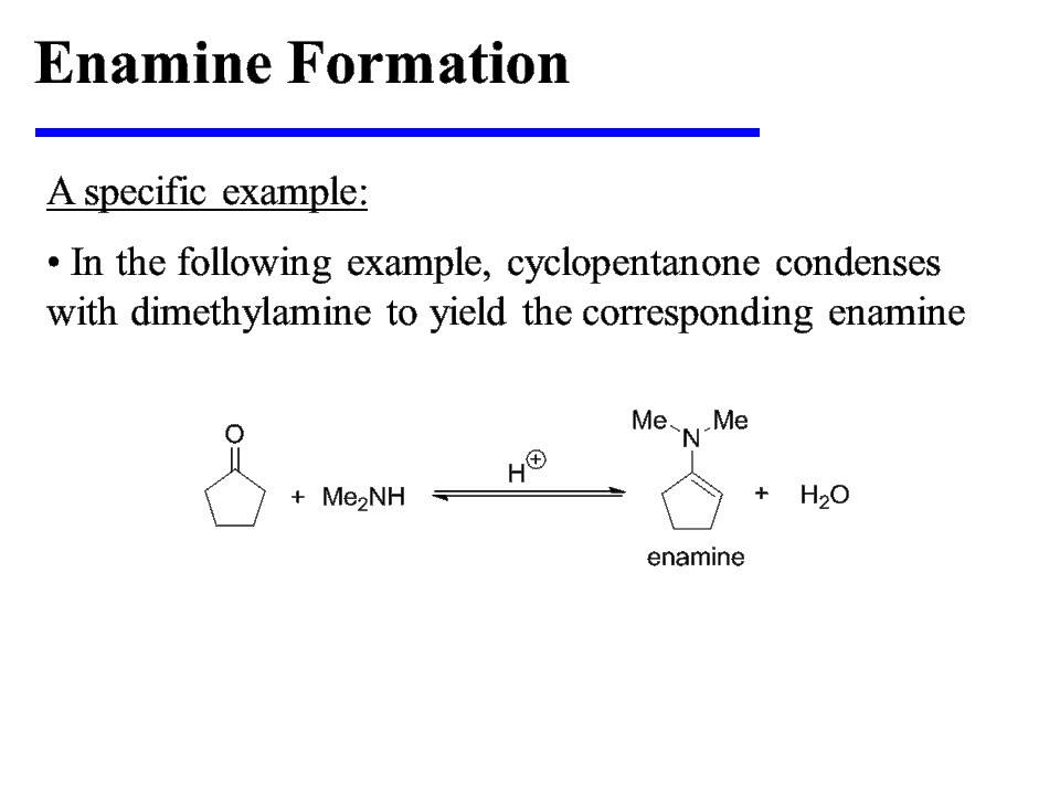 Enamine Formation And Hydrolysis Youtube