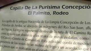 LA PURÍSIMA CONCEPCIÓN EN PALMITOS RODEO DURANGO DATA DE 185