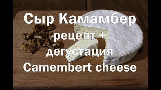 Сыр Камамбер, рецепт +дегустация Cheese Camembert