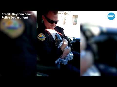 Police officers save River the Frozen Puppy