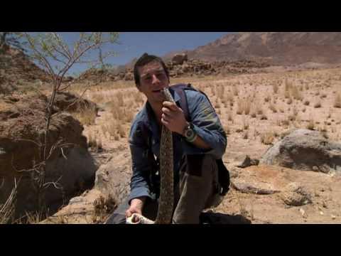 Born Survivor 3 - How to Kill a Snake | Doovi