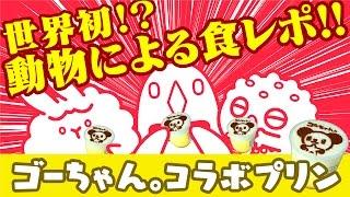 世界初!?動物が食レポしてみた!【ゴーちゃん。 Pastelコラボプリン】 thumbnail