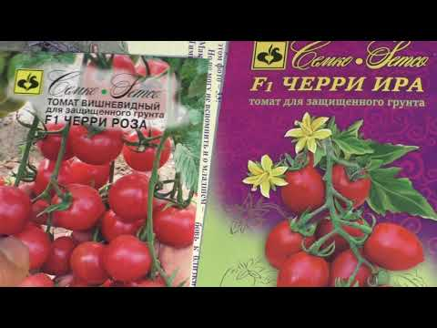 заказ семян томатов от Семко  для сезона 2020г