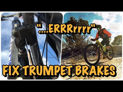 Trumpet Brakes? Fix Noisy MTB Brakes and New Brake Pad Install (Shimano)
