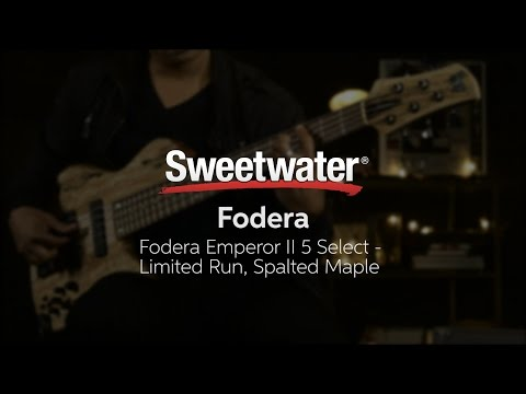 Download Youtube: Fodera Emperor II 5 Select Limited Run Spalted Maple Bass Demo