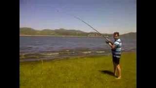 Pesca de carpa en dique los molinos