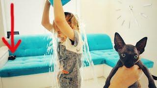 Ведро воды на голову, не челлендж с водой! Знакомство с Диана ВаМи