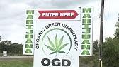 420Ville cannabis dispensary left out of Ontario marijuana industry