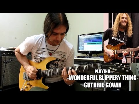 Guthrie Govan - Wonderful Slippery Thing (Cover)