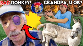 DONKEY KICKED MY GRANDPA!  GETTING RID OF BAD WOODROW 4 GOOD!!!!  (FV Family Vlog)