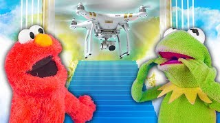 Kermit the Frog and Elmo's Quest for GAWD!
