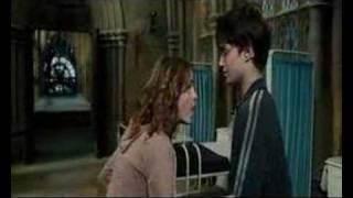 Hermione Granger (and Harry Potter) - Boyfriend