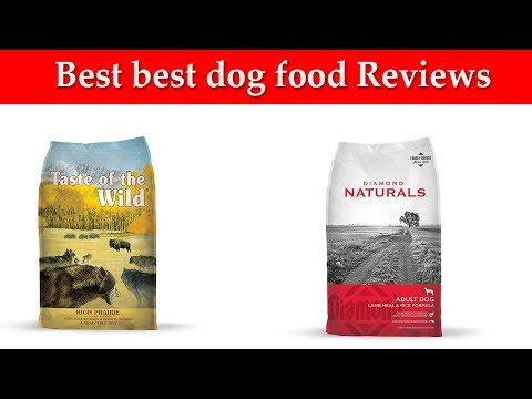 best-dog-food-reviews