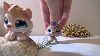 LPS: One Wolf One Pack part 1