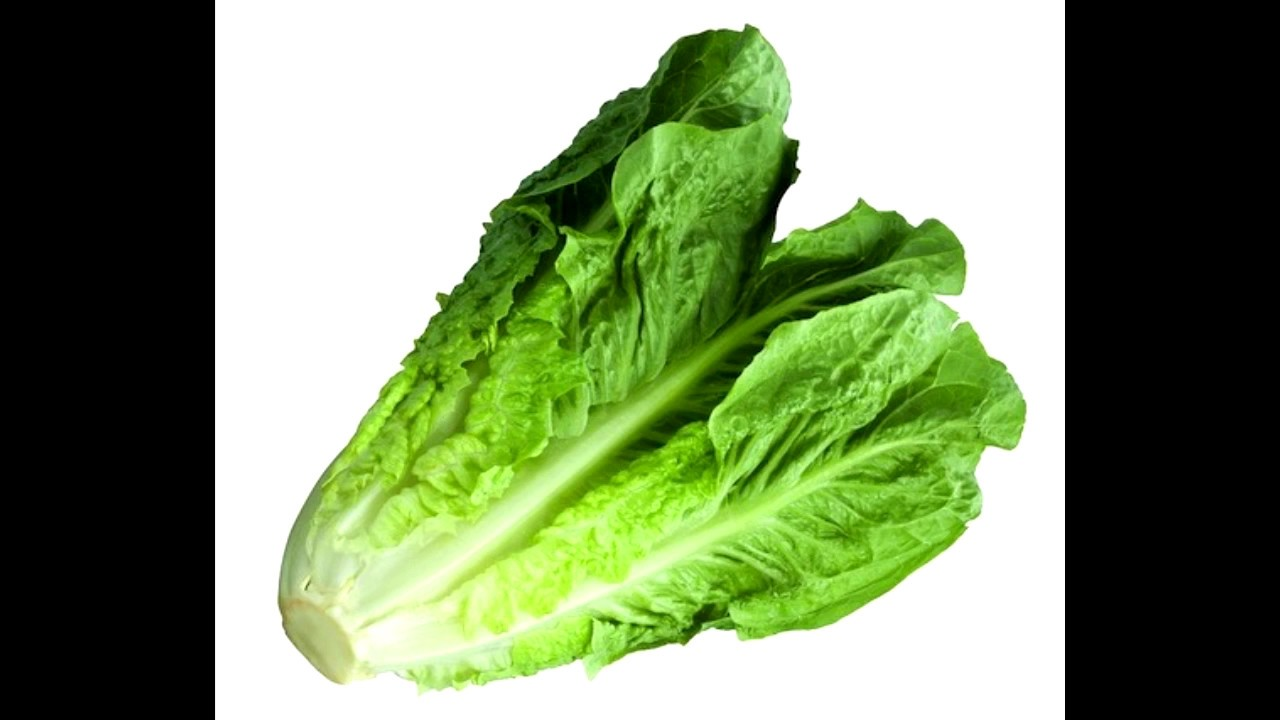 Download Beep Beep Lettuce