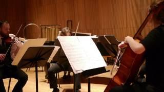 Michael Nyman Mozart Webern