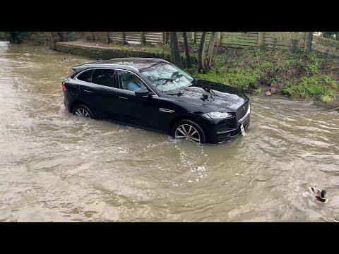 Jaguar Doesn't Do Deep Water || ViralHog