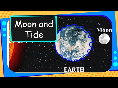 Science -  Why Tides Occur - English