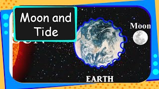 Science -  What are Tides - English