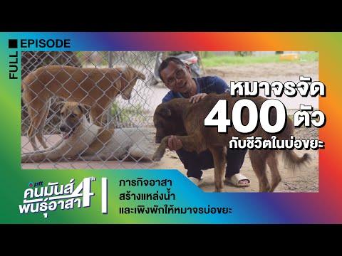 ภารกิจอาสาสร้างแหล่งน้ำและเพิงพักให้หมาจรบ่อขยะ - วันที่ 31 Aug 2019