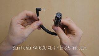 Quick Look: Sennheiser KA-600 XLR-F to 3.5mm Jack