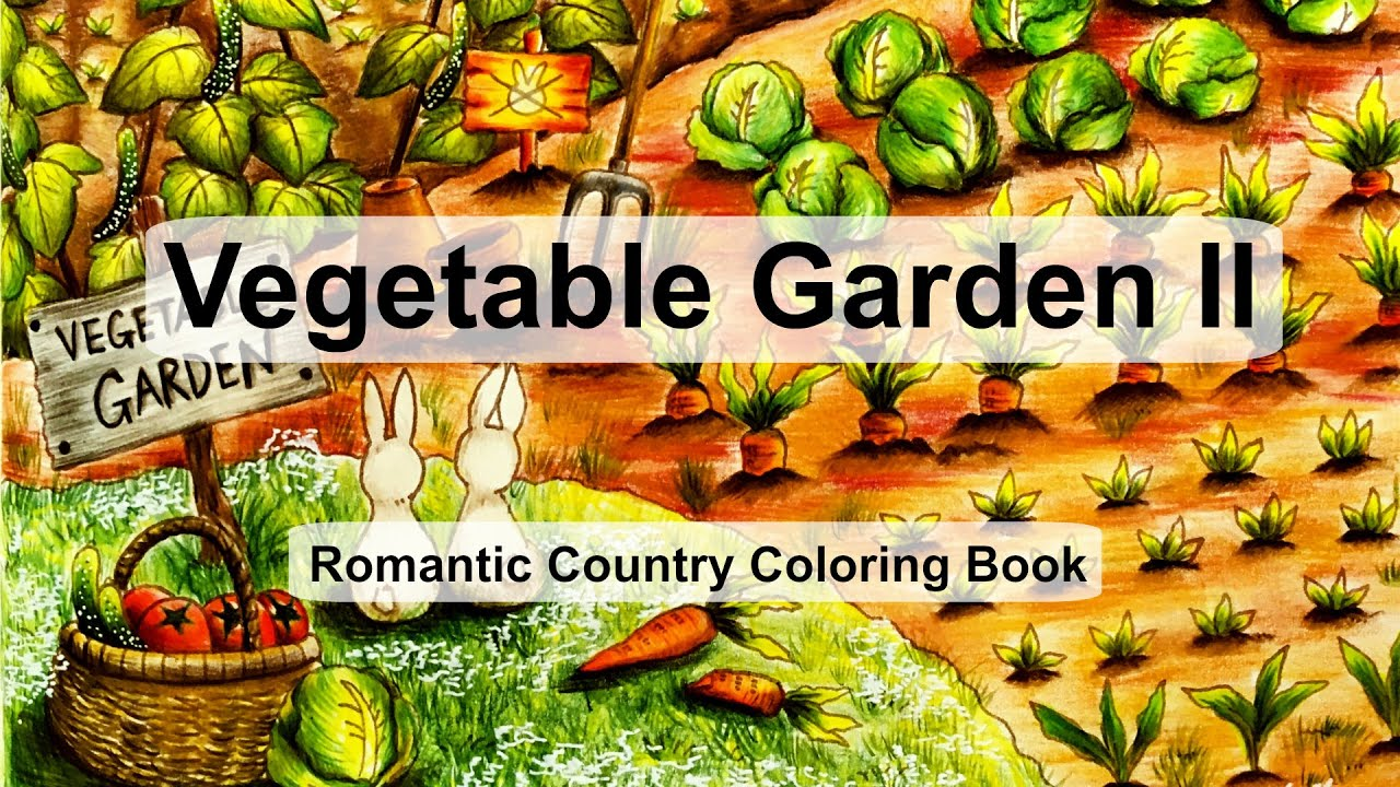 Vegetable Garden II