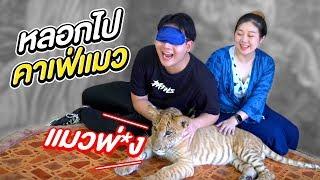 หลอกปิดตาเอกภาณุไปคาเฟ่แมว!! (เสือชัดๆ!!!!) - Epic Toys
