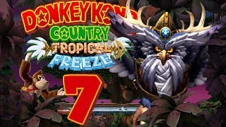 Let's Play Donkey Kong Country Tropical Freeze Part 7: Krow wurde zur Eule