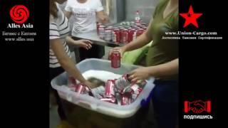 как в Китае производят поддельный коньяк Hennessy XO и пиво Budweiser // Alles Asia