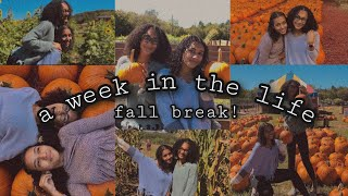 a week in the life (fall break) | pictures, hike, pumpkin patch, and more!