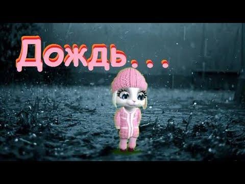Zoobe Зайка Дождь по крышам, дождь по лужам - Как поздравить с Днем Рождения