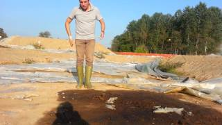 Lacchiarella: terreno da bonificare abbandonato
