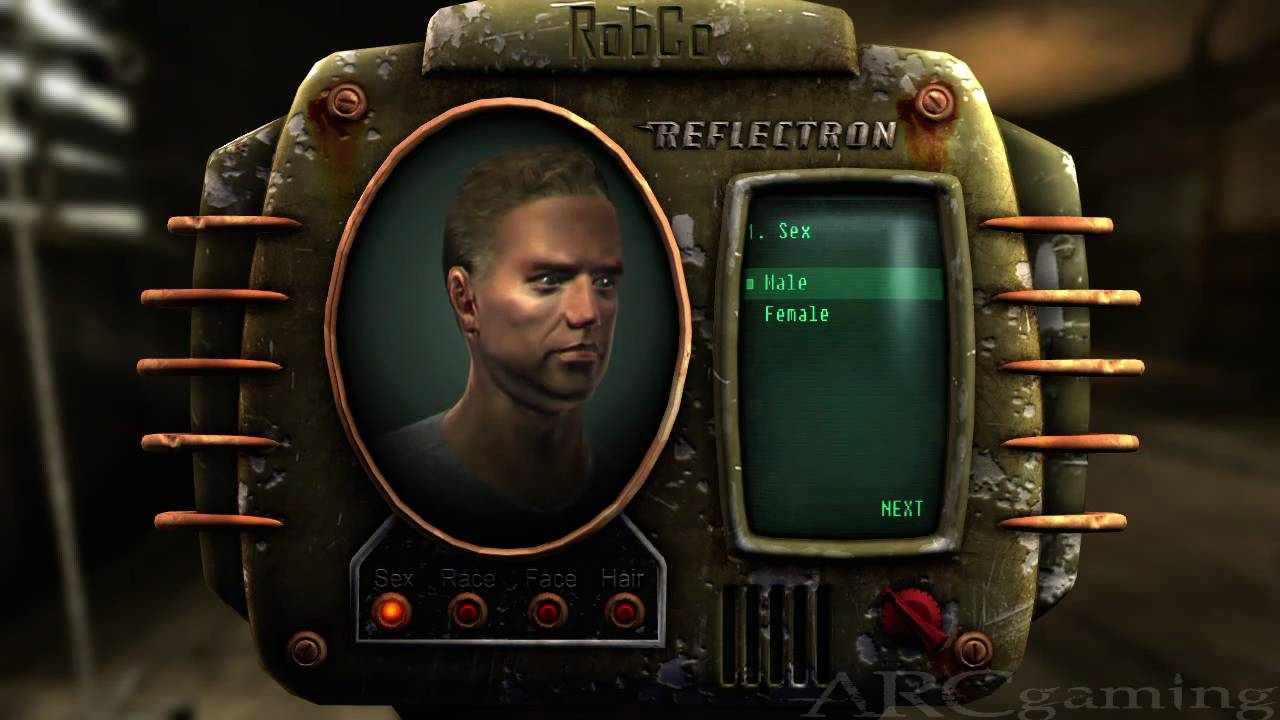 Fallout Character Builds New Vegas