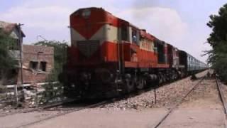 Tren al Rajasthan - India