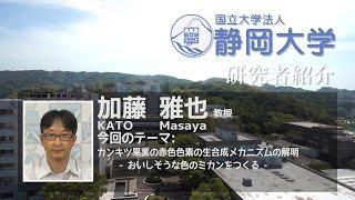 加藤 雅也 (KATO Masaya) 教授 学術院農学領域 - 共生バイオサイエン...