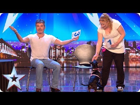Meet Tilly: The world's most intelligent dog! | Auditions Week 1 | Britain's Got More Talent 2018