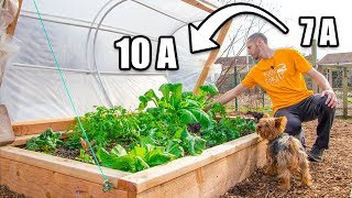 DIY 2 Layer Hinged Hoophouse, Move Up 3 ZONES! Raised Bed Gardening