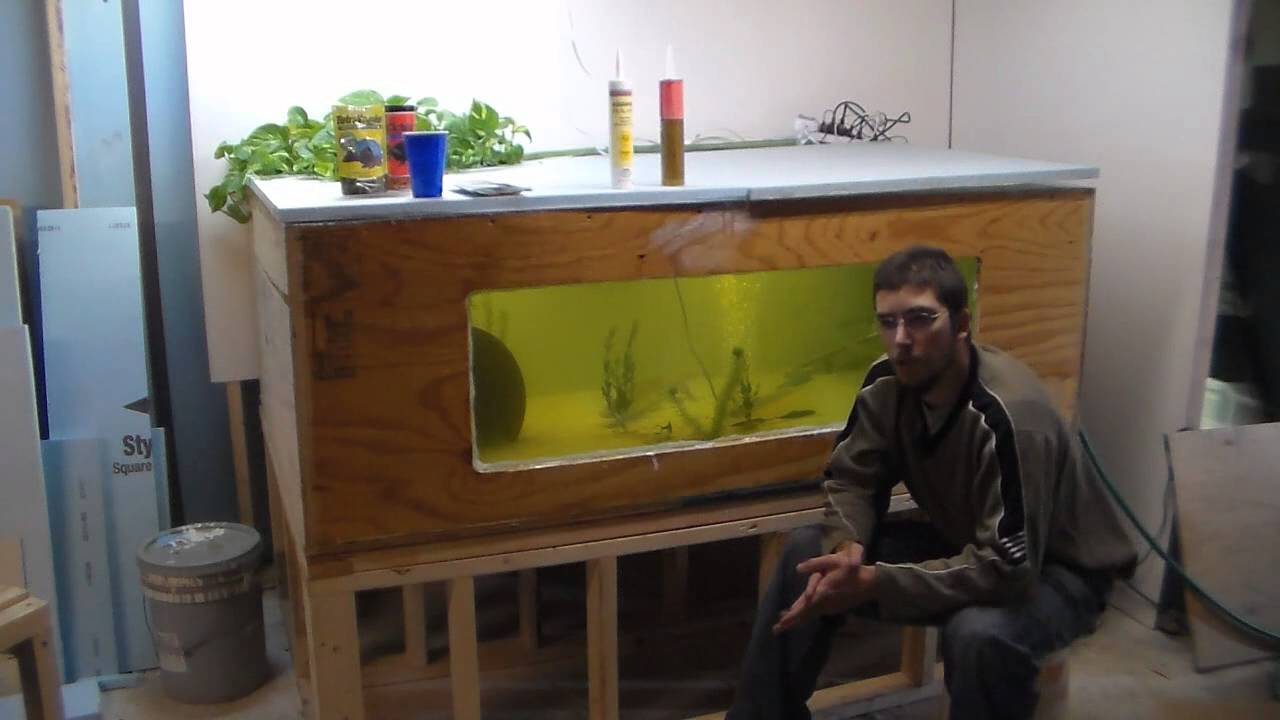 Cool Aquariums For Sale 300 Gallon Plywood Tank Build And Advice Cheapest Youtube