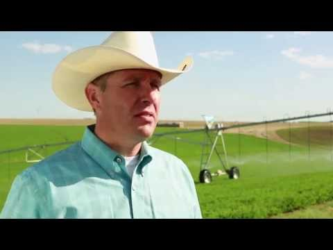 What Growers Say About BaseStation - Valley Irrigation