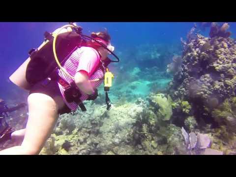 Scuba Diving - Molasses Reef - Key Largo, FL - August 2016