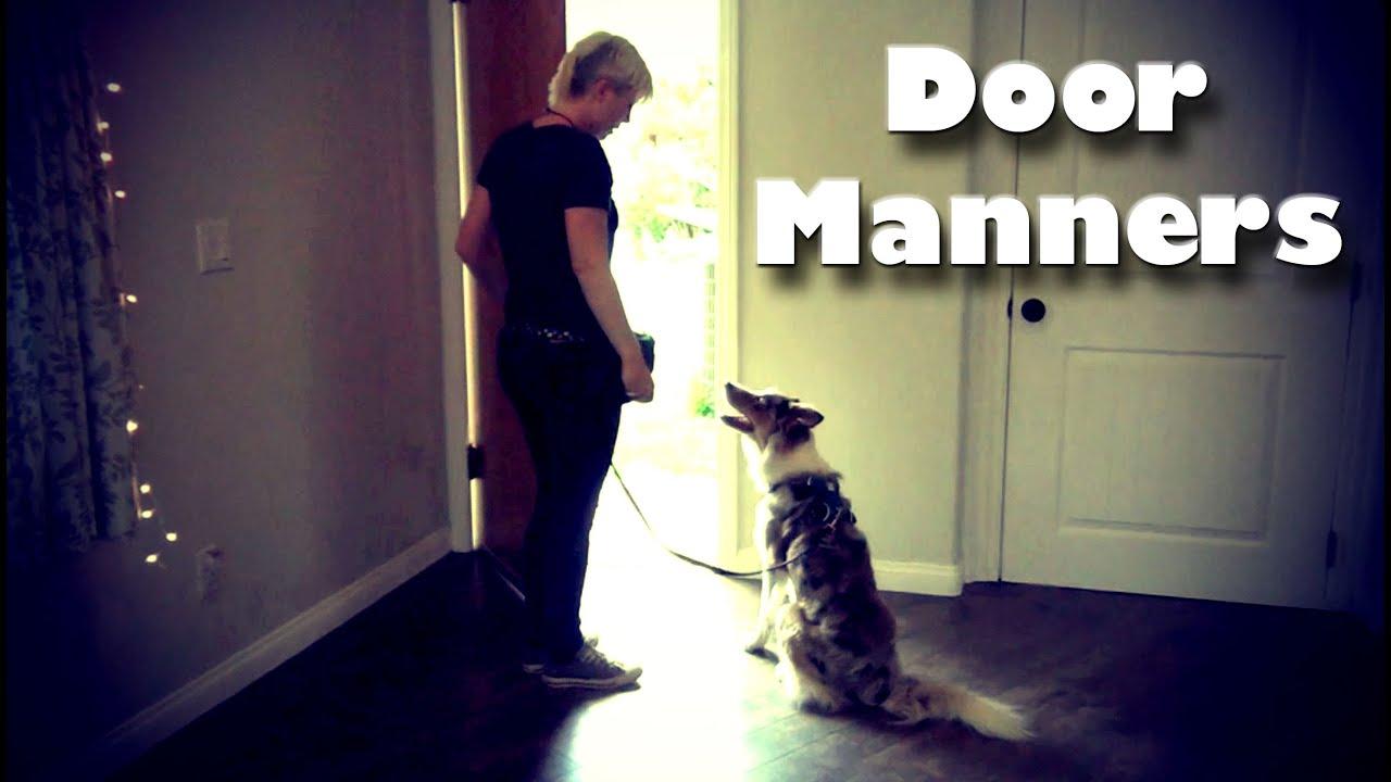 Training Dog Door Manners